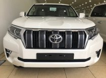 Bán ô tô Toyota Prado VX năm 2019, màu trắng, nhập khẩu giá 2 tỷ 550 tr tại Hà Nội