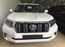 Bán Toyota Land Cruise Prado VX 2019, màu trắng, xe và giấy tờ giao ngay, LH: 0906223838 giá 2 tỷ 560 tr tại Hà Nội