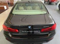Bán BMW 5 Series 520i đời 2019, màu nâu, mới 100% giá 2 tỷ 389 tr tại Tp.HCM