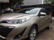 Bán xe ô tô Toyota giá rẻ chính hãng | P1604