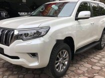 Bán Toyota Land Cruiser Prado 2019, màu trắng, xe nhập giá 2 tỷ 348 tr tại Tp.HCM