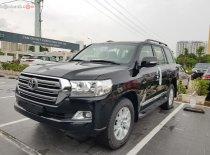 Bán ô tô Toyota Land Cruiser 4.7 VX sản xuất 2019, màu đen, xe nhập giá 4 tỷ 163 tr tại Hà Nội
