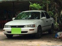 Cần bán Toyota Corolla đời 1995, màu trắng, nhập khẩu   giá 145 triệu tại Tây Ninh