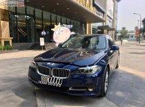 Bán BMW 5 Series sản xuất 2016, màu xanh lam, xe nhập chính hãng giá 1 tỷ 500 tr tại Hà Nội